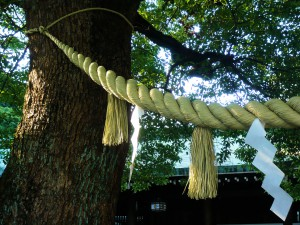 Shimenawa_-_Meiji_Shrine